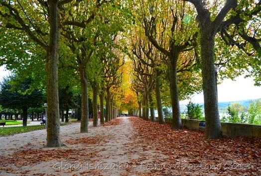 Glória Ishizaka - Folhas de Outono 1
