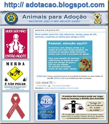 adotacao_blog