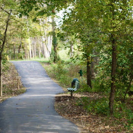 by Stacy Tuck - City,  Street & Park  City Parks ( fall, color, colorful, nature )