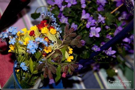 blom_20120517_blue