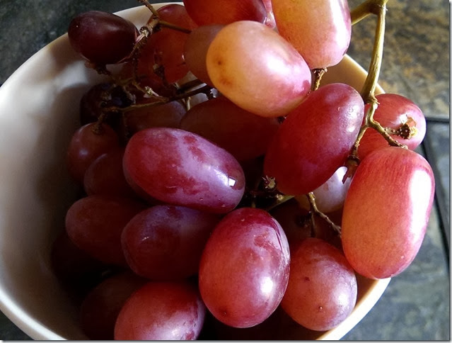 grapes-public-domain-pictures-1 (2258)
