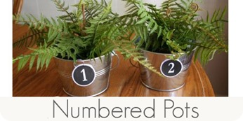 numbered pots