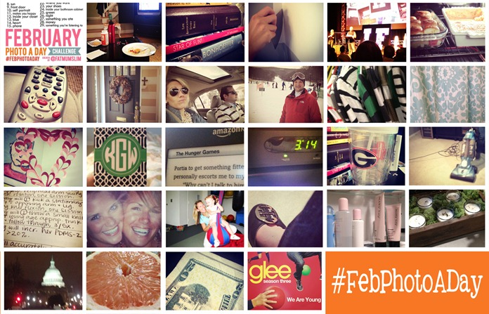 February Photo A Day Collage