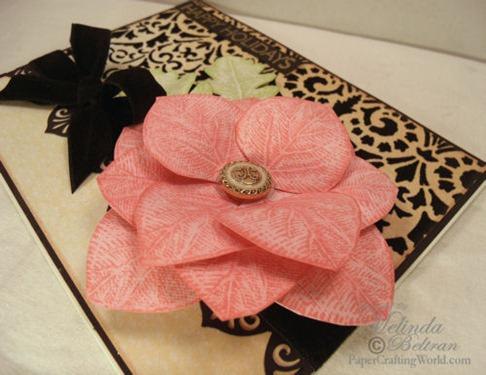 pink p closeup-500
