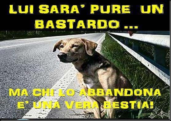 Abbandono cani_manifesto