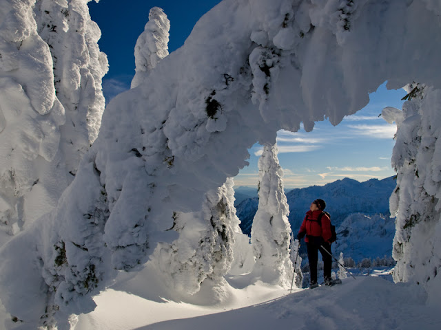 Jan/Feb 2011 - 1st Place / Snow-encrusted trees arch over a snowshoer at Artist Point / Credit: Grant Meyers