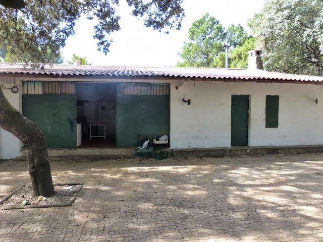 Refugio 2 (2).JPG