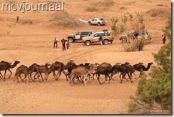 Rally Marokko 2012 Slot 13