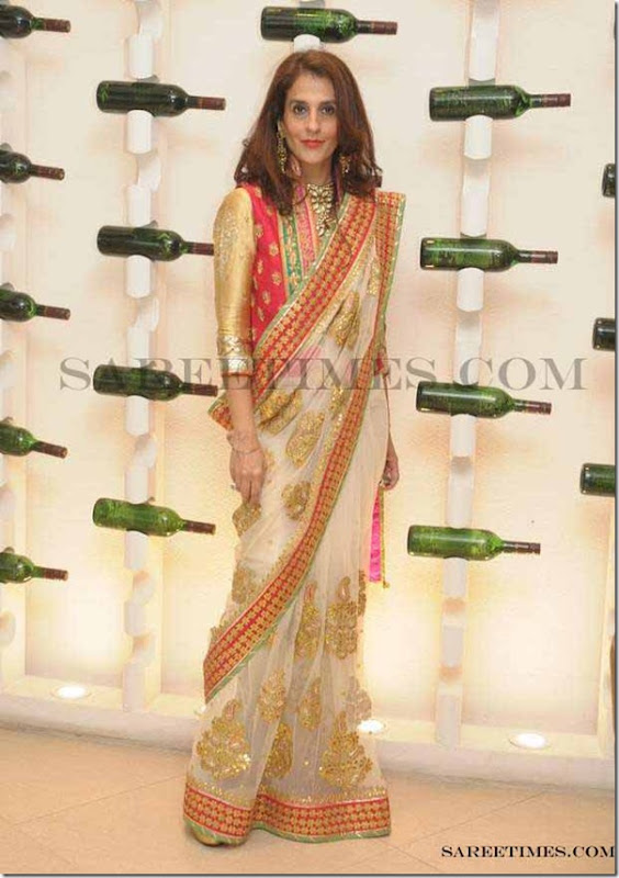 Gunita_Dhingra_Nidhi_Tholia_Saree copy