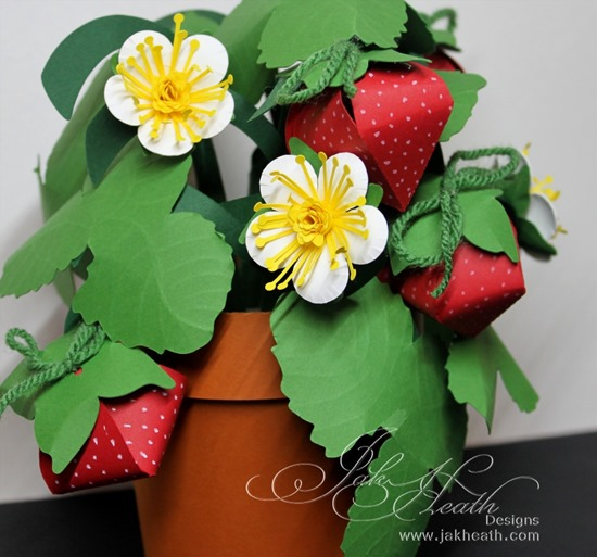Strawberry pot3