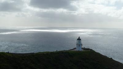 Mehr Northland (NZ)