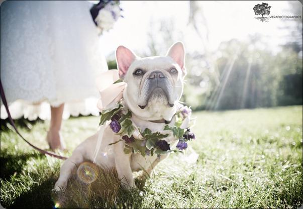 014campovida_wedding_photography sharla flock designs amd viera photo