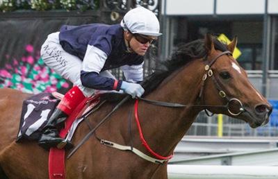 http://racehorsephotos.com.au