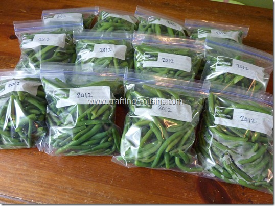 blanch and freeze green beans (52)