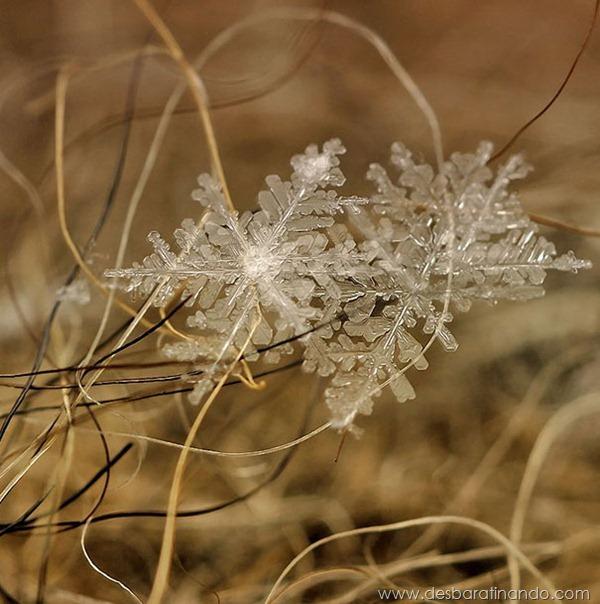 flocos-de-neve-macro-snowflakes-macro-photography-andrew-osokin-desbaratinando (10)