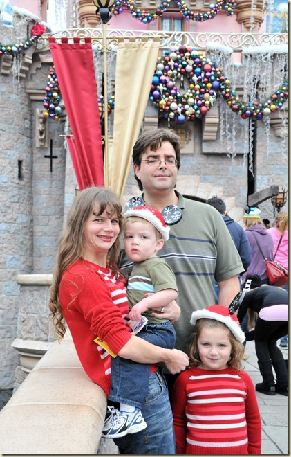 Christmas 2011 Castle