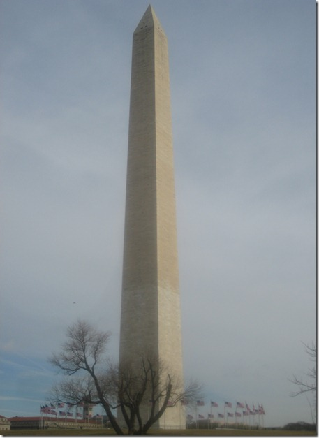 01 20 12 - National Mall (5)