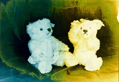 Split-Toned-Prints---Bears-2-D