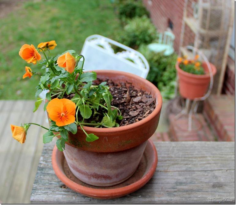 clay pot 1