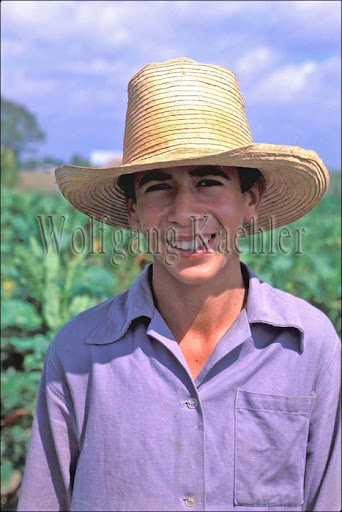 CUBA, NEAR PINAR DEL RIO, TOBACCO FARM, TEENAGE FARM BOY