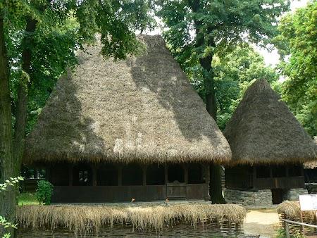 10. Muzeul Satului.JPG