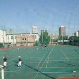 baseball in tokyo in Tokyo, Tokyo, Japan