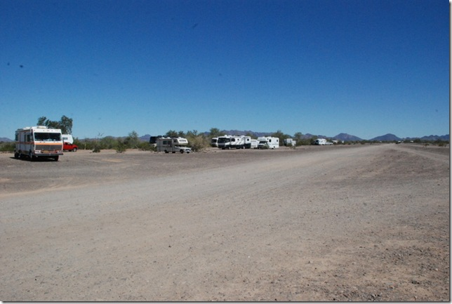 03-10-13 A Hi Jolly Quartzsite 004