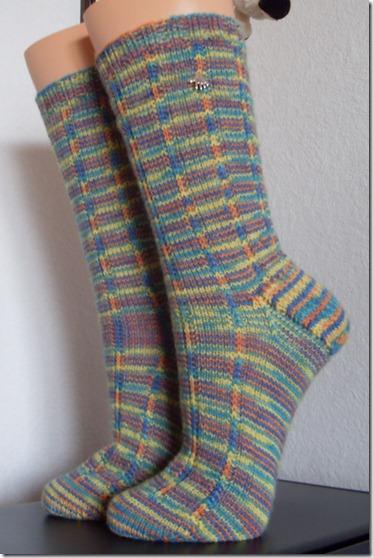 2012_01 Socke Jeck kunterbunt (1)