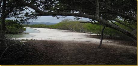 Foto Galapagos Spiaggia Santa Cruz