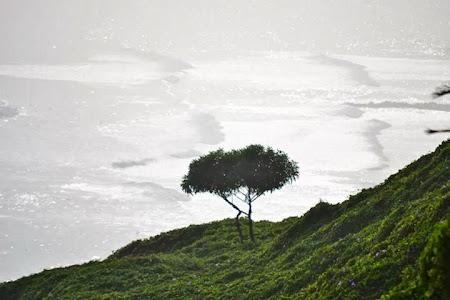 Obiective turistice Peru: Cartierul Miraflores din Lima