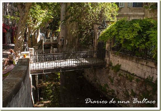 Avignon-37
