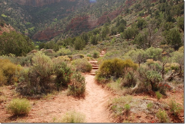 05-05-13 C Watchman Trail 008