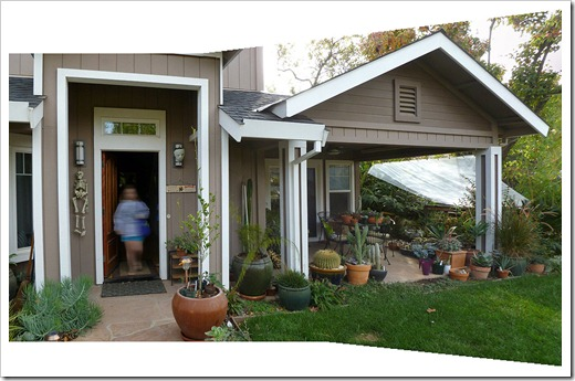 111114_front_patio_pano