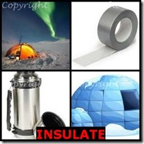 INSULATE- 4 Pics 1 Word Answers 3 Letters
