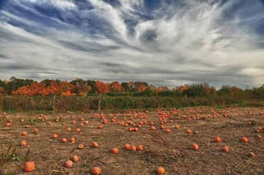 CiderMillMichigan_HDR