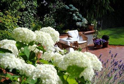 Mein Annabellegarten