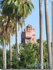 Florida 2011 851