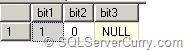 sql-server-bit4