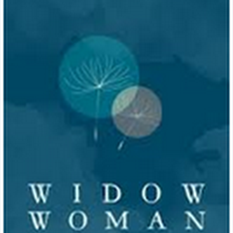 Orangeberry Book Of The Day - Widow Woman by Julia Tagliere
