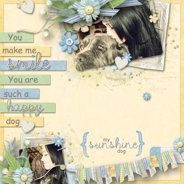 My-Sunshine-Dog