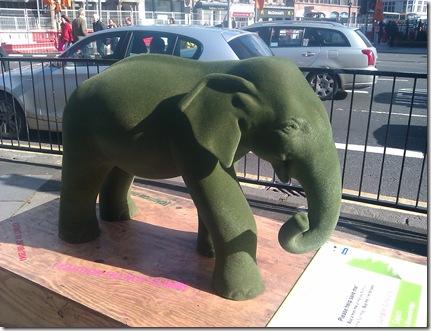 baby elephant jungle city edinburgh