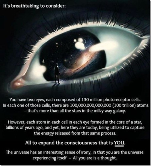 great_images_that_go_together_with_astounding_facts_640_17