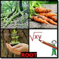ROOT- 4 Pics 1 Word Answers 3 Letters