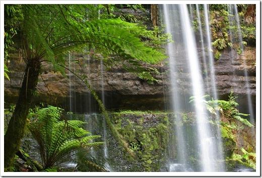 100103_Mt-Field-National-Park,-Tasmania_151