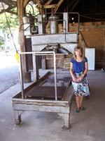 2013.08.15-009 Stéphanie et la presse à cidre