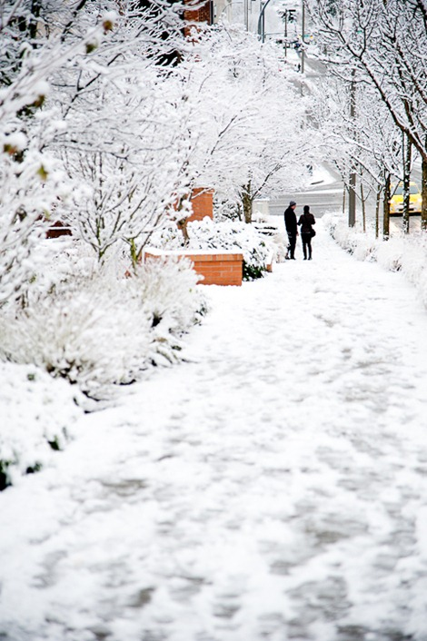 Snow on Sunday-4928