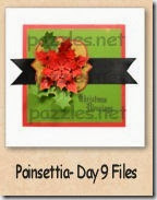 poinsettia-day-9-140