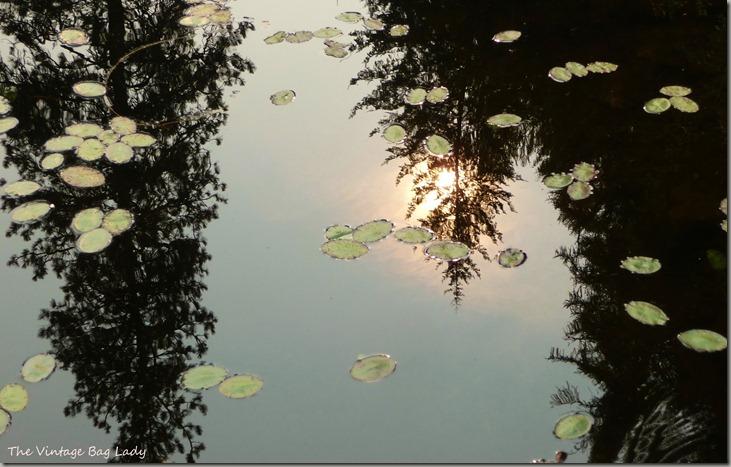 lake kelso 002