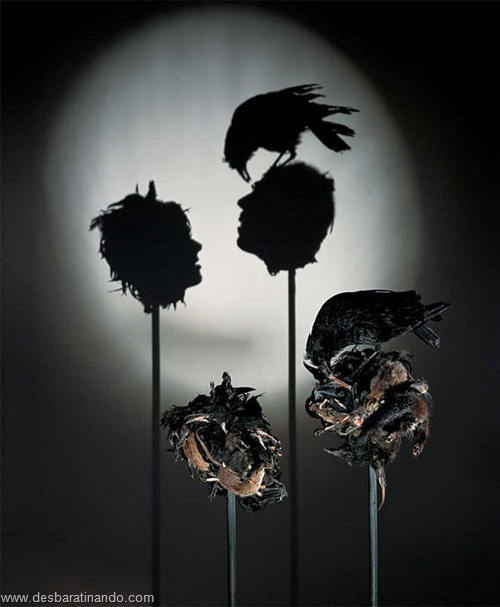 arte das sombras desbaratinando rubbish shadow sculptures tim noble sue webster (6)