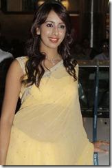 actress_sanjana_gorgeous_pic_in_saree1